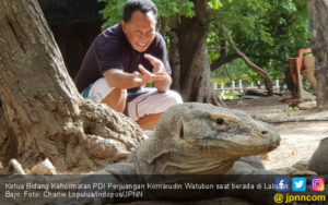 Komarudin Watubun: Cabut Investasi Berisiko di Pulau Komodo